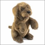 Folkmanis hand puppet sitting dog